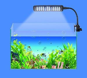 14 best just keep swimming images on pinterest fish aquariums assem new 35w aquarium 3 mode flexible tank lamp 48 led white blue fandeluxe Choice Image