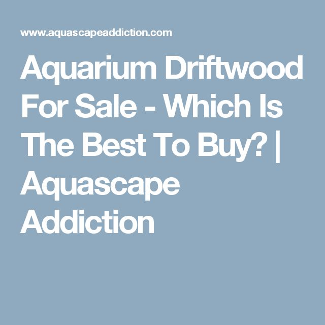 Aquarium Driftwood For Sale - Which Is The Best To Buy? | Aquascape Addiction