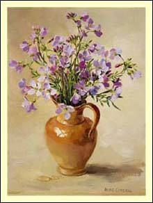 Lady's Smock by Anne Cotterill