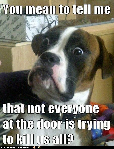 funny pictures - Animal Memes: Baffled Boxer - But They Smell So Threatening