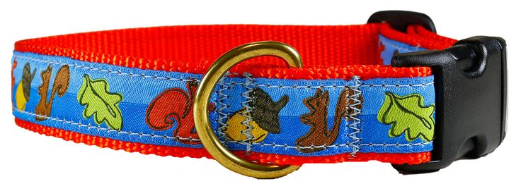 "Belted Cow Company - Squirrel 1"" Dog Collar, $25.00 (http://www.beltedcow.com/products/squirrel-1-dog-collar.html) Designed by Solvejg Makaretz"