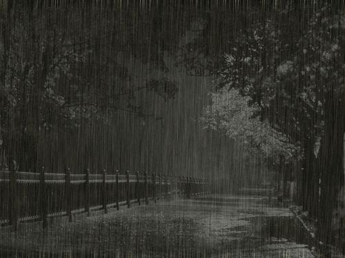rain, black and white, and gif 圖片   rain in 2019   Rain gif, Rain