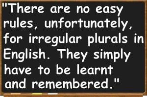 A List of 100 Irregular Plural Nouns in English