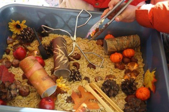 november sensory bin - happy hooligans - exploring fall materials