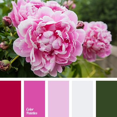 color matching, color palette for spring, color solution for design, dark green color, green shades, lime color, pink color, pink shades