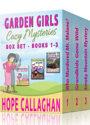 3 Cozy Mystery Books-1 Great Price!