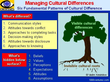Understanding Cultural Differences and Australia Culture Essay Sample