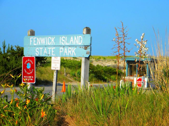 Fenwick Island State Park is located on Route 1, just south of Bethany Beach (or north of the town of Fenwick Island).