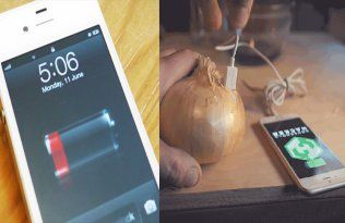 Unbelievable! Now You Can Charge Your Phone With An Onion. Is It Possible? Yes, See Here…