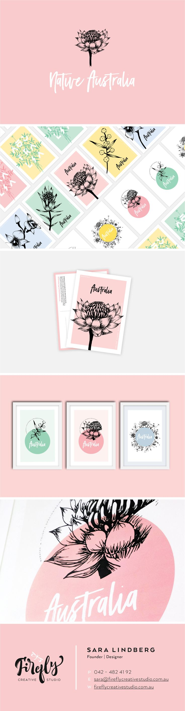 Native Australia Art by Firefly Creative Studio  Art Prints, Posters, postcards and more with native Australian flowers.