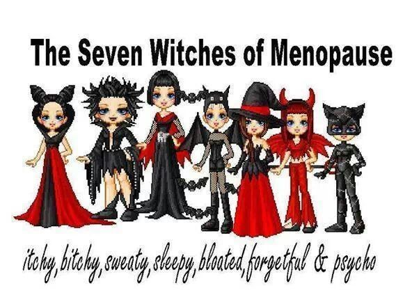 Funny Memes About Menopause : Best hormonal humor quotes images on pinterest