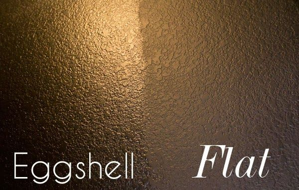 Pin by courtney newsome on for the home pinterest - Eggshell paint on walls ...
