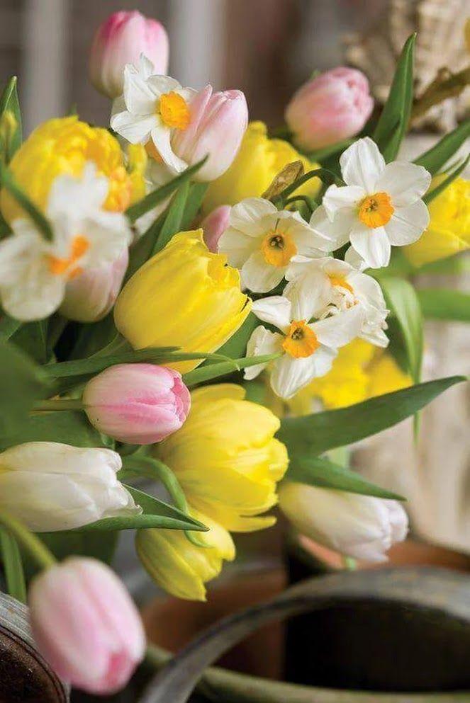 красивые букеты весенних цветов фото