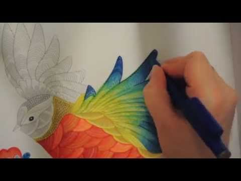 This Is Just A Quick Time Lapse Of Bird I Coloured Form Millie Marottas Animal Kingdom Adult Colouring Book