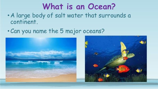 What Is An Ocean A Large Body Of Salt Water That Surrounds A - The five major oceans
