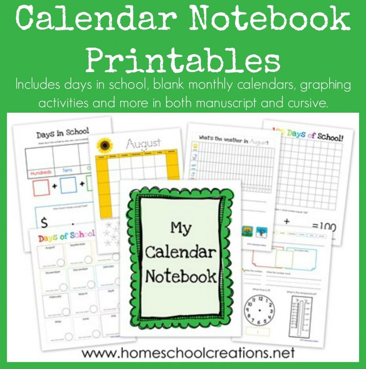 Calendar Notebook Printables - free daily learning notebook to use with early childhood for practicing counting, writing skills, money, addition, days/months of the year, weather and more.