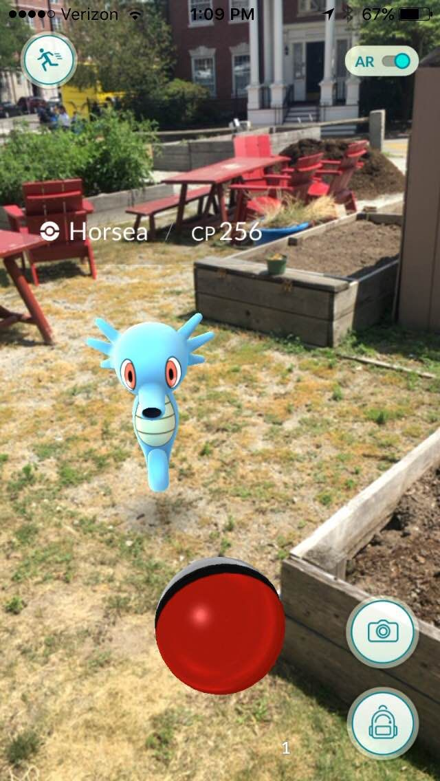 Sustainable Harvard ‏@GreenHarvard On sunny days #Pokemon like to spend time in the @Harvard Community Garden #PokemonGo http://hvrd.me/dQXO302rrXy