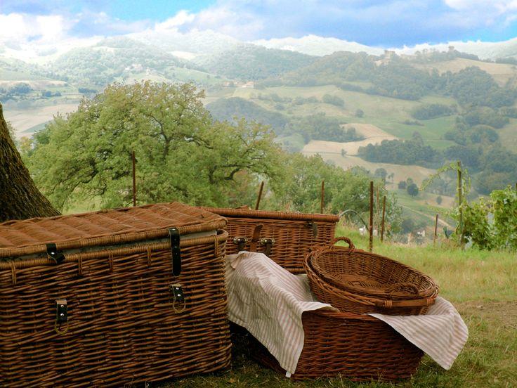 Picnic sotto la grande quercia www.gariselliassociati.it