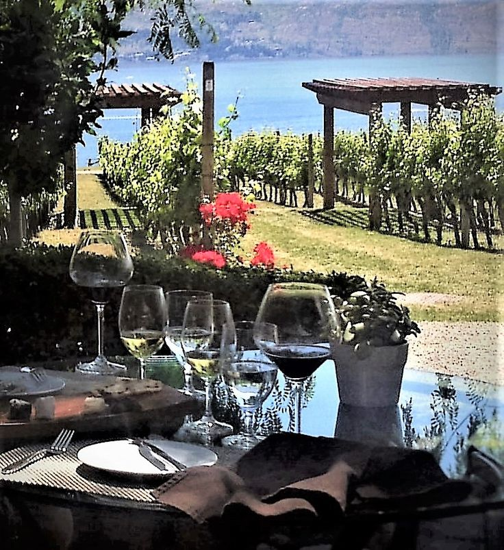 WINE LOVERS AGREE - The always spectacular Quails Gate Winery and Old Vines Restaurant are a world-class pairing of award-winning wines and cuisine served in a paradise.