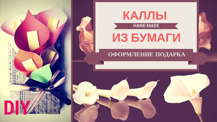 Каллы. Оформление подарка на 8 марта. Как сделать простые цветы каллы из...