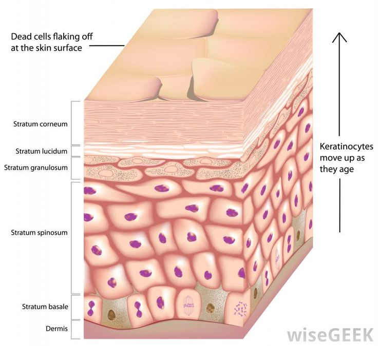 72 Best Wound Mx Images On Pinterest