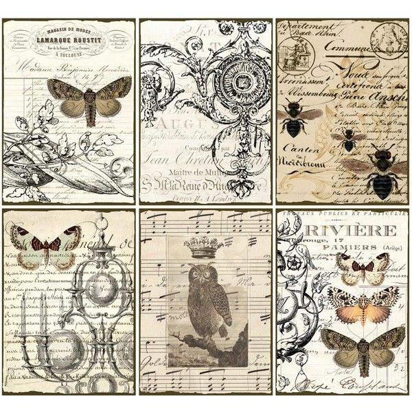 INSTANT DOWNLOAD ViNtaGe EpHeMera TaGs PaPer OwL BuTTerflieS PriNtaBle... ($4.25) ❤ liked on Polyvore