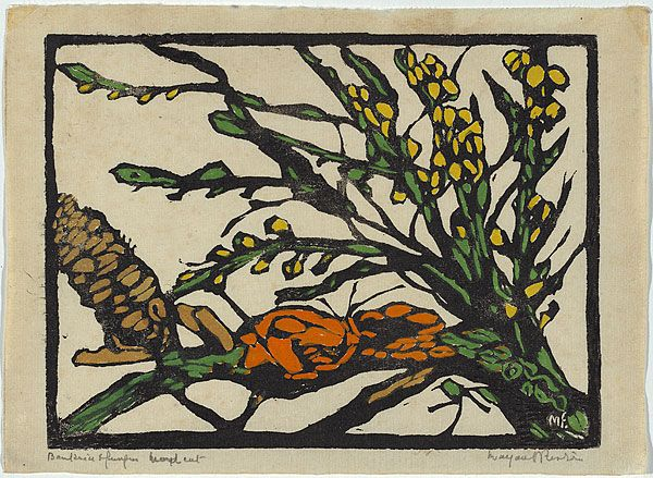 """""""Banksia and fungus"""" by margaret preston"""