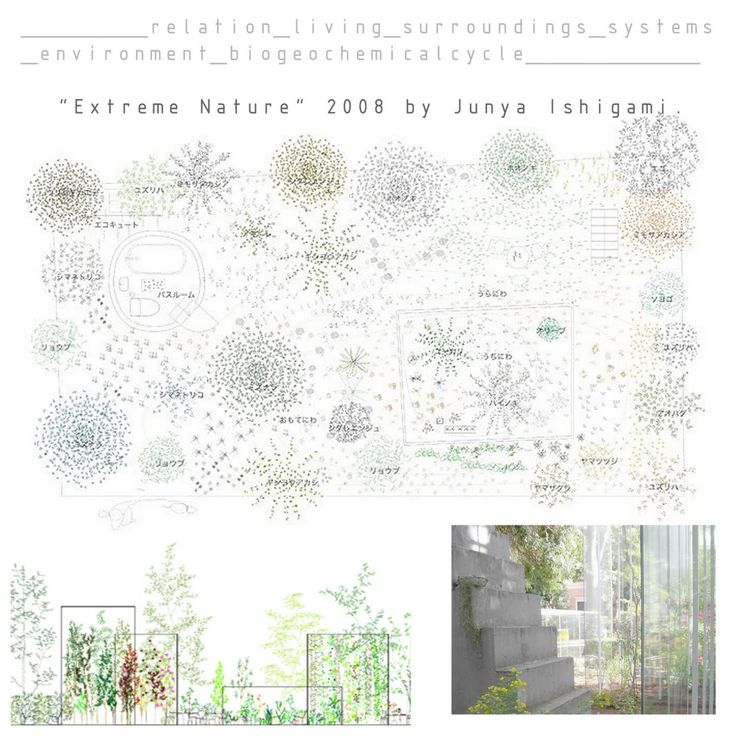 "legrandblog: "" Junya Ishigami started to work in the design of garden. His buildings are closer living than nonliving. """