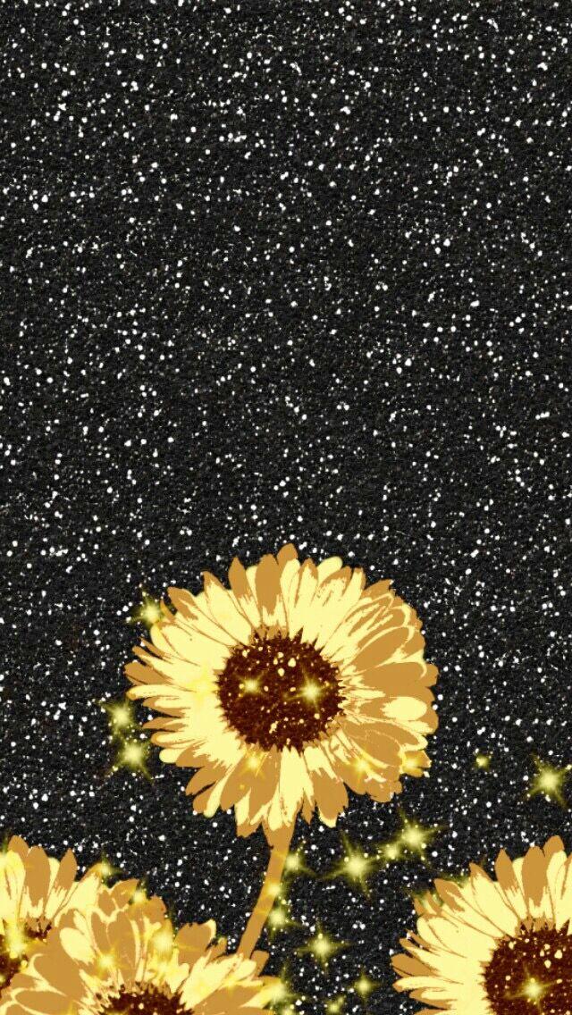 Best 25 Sunflower iphone wallpaper ideas on Pinterest Sunflower