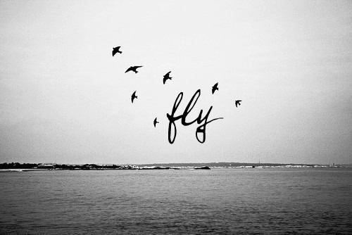 i've always wanted to fly away like a bird!