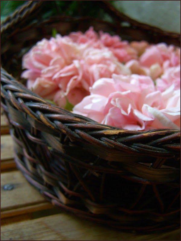 NAPMÁTKA TŰZHELY - ÉLET ÉS ÉTEL MAGYARORSZÁGON rózsaszirup érdemes gyüjteni