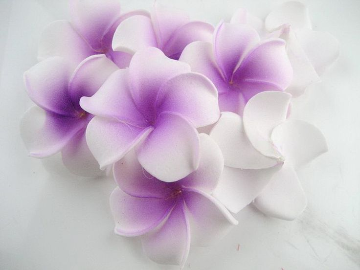 12 Foam Floating Frangipani/plumeria/hawaiian Flower Heads Pool Pond 2 Inch Sf134 >>> Check this awesome product by going to the link at the image.