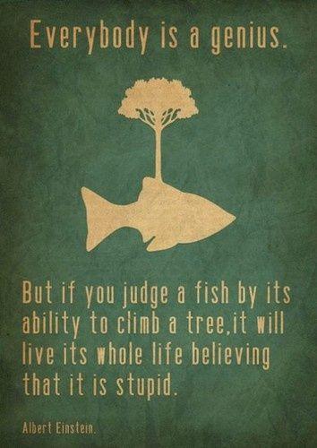 self esteemAdhd, Albert Einstein Quotes, Favorite Quotes