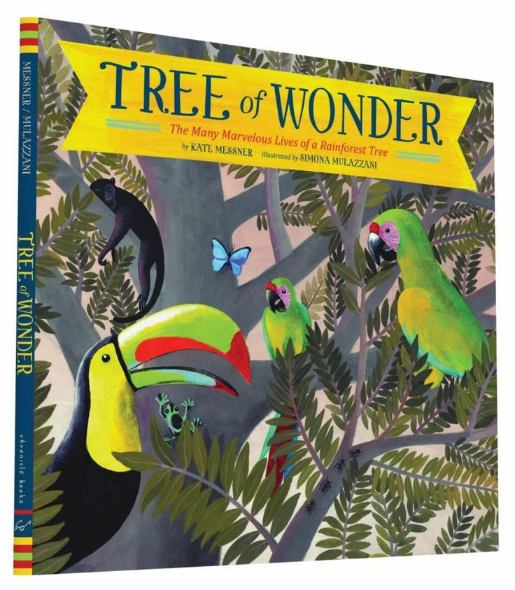 Tree of Wonder : The Many Marvelous Lives of a Rainforest Tree - Kate Messner