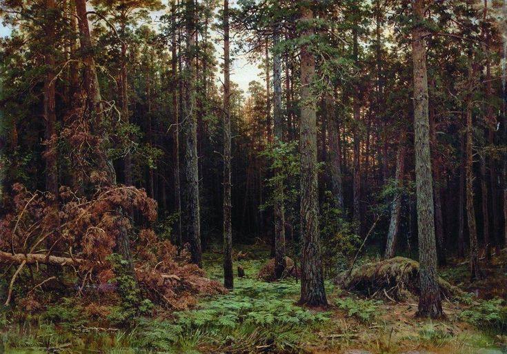 Pine Forest - Ivan Shishkin - WikiArt.org