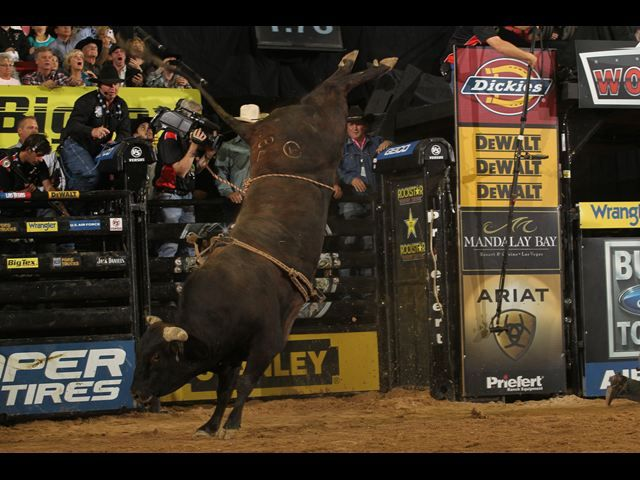 17 Best images about Rodeo & PBR on Pinterest   The bull ...