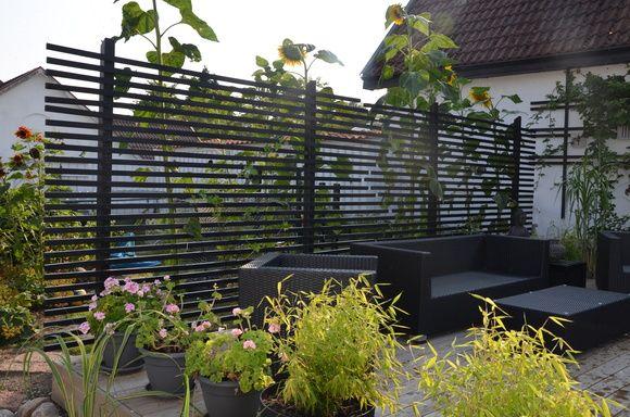 svart spalje,bambu,pelargonier,solrosor,trädgård,altan