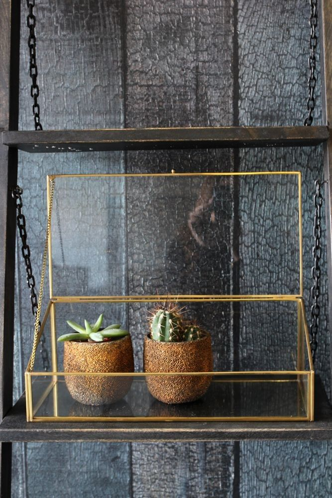 Brass & Glass Display Box with Sloping Lid - Display - Home Accessories
