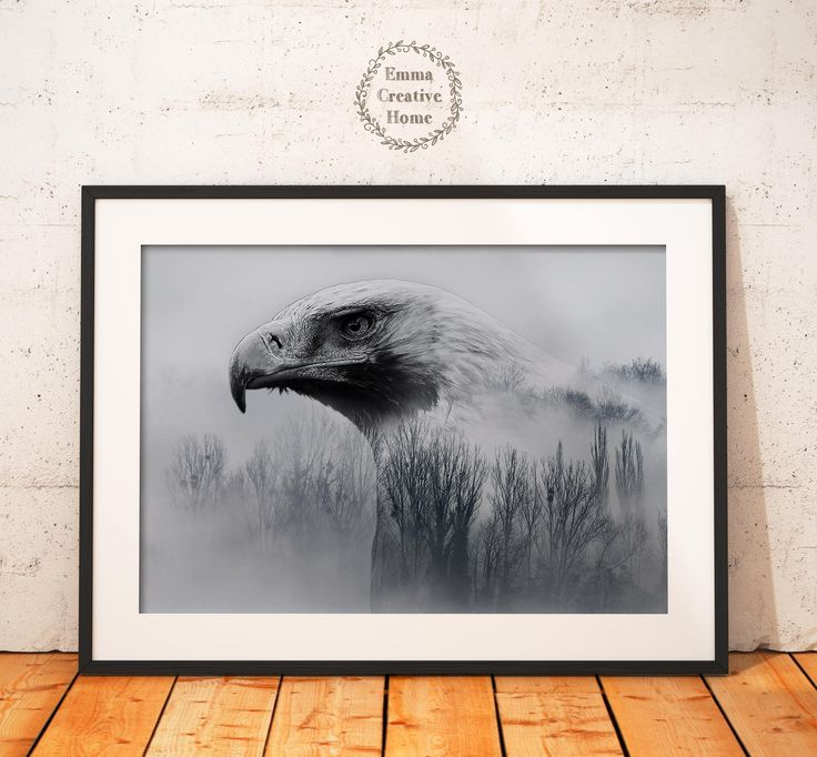 Eagle Print, Digital Download, JPG, Animal Art ,Nature, Wild Life Dekor, Wall art Print, Digital Print,Bird Art by EmmaCreativeHome on Etsy