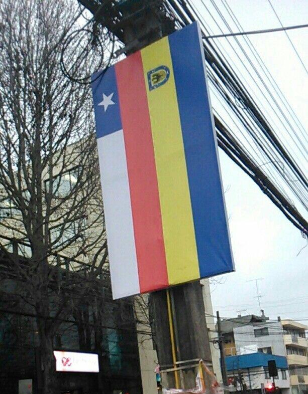 Con este pendón colgado en los postes, la comuna de Concepción rinde un homenaje al mes de la patria. ¿Que te parece?