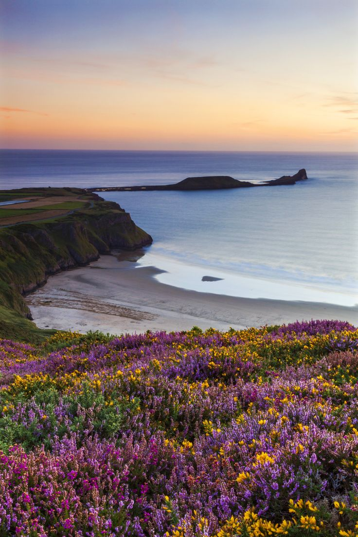 The UK has some gorgeous beaches—even if the weather isn't ideal for sunbathing. Rhossili Bay on the tip of Gower Peninsula in Swansea, Wales is particularly pretty–just look at those blooms.