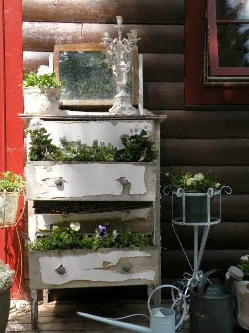 Planten in een oud ladekastje