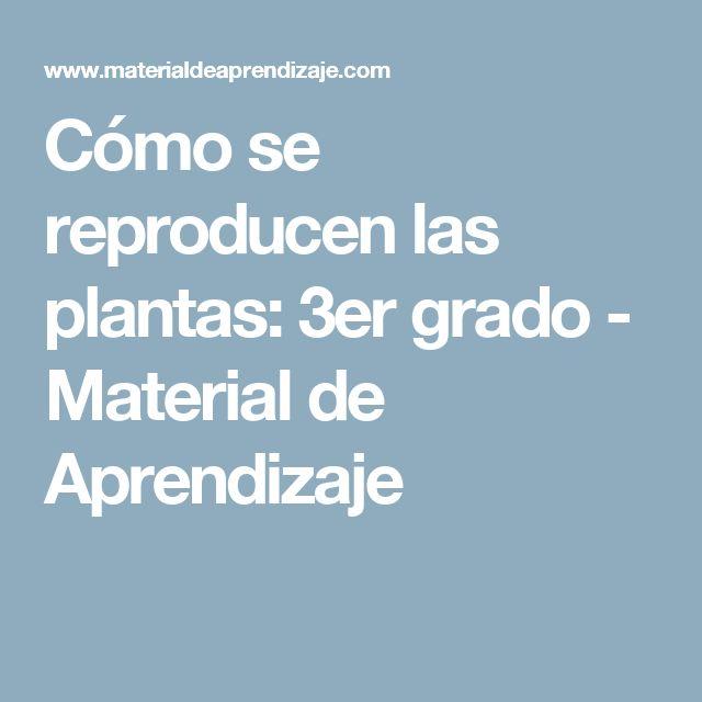 Cómo se reproducen las plantas: 3er grado - Material de Aprendizaje