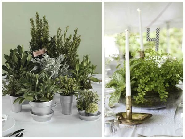 herb and fern wedding reception centerpieces
