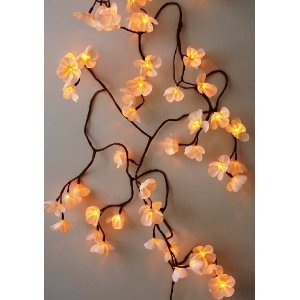 Fairy Lights Frangipani Silky Flower String LED Light Chain