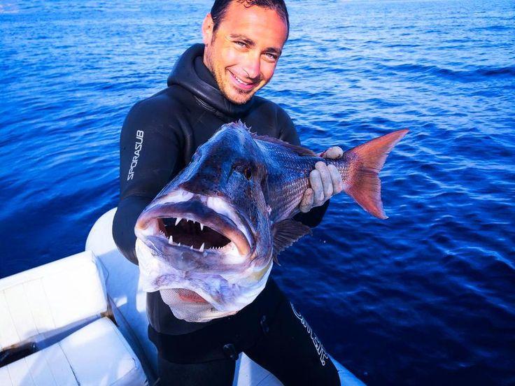 Pescasub all'isola d'Elba in Primavera con Sascha Orsi