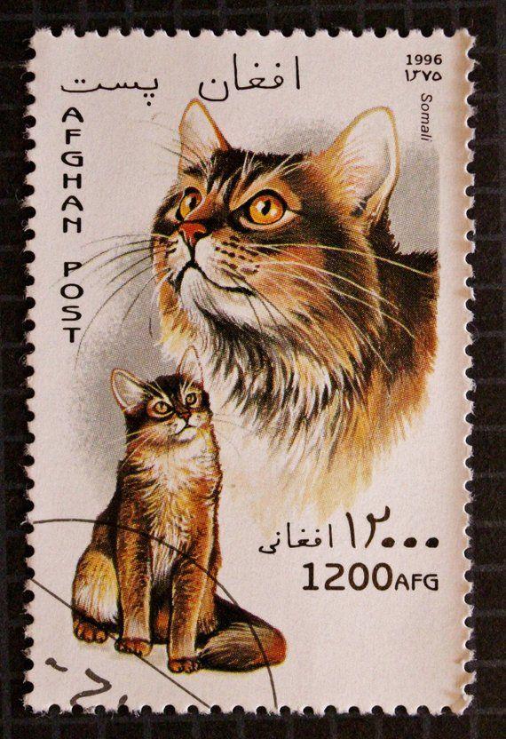 Cat Postage Stamp Set Afghan Post Afghanistan Postal Ephemera American Shorthair Japanese Bobtail Somali Cat Kitten Pet Cat Stamp Japanese Bobtail Stamp