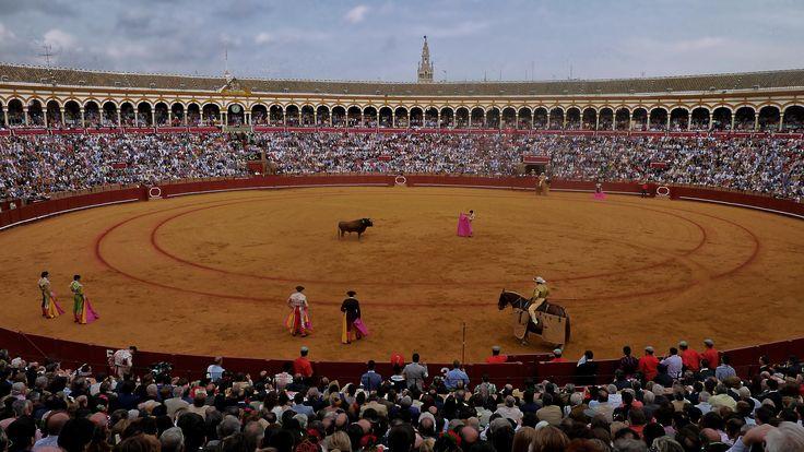 Real maestranza de Sevilla by Lola Camacho on 500px