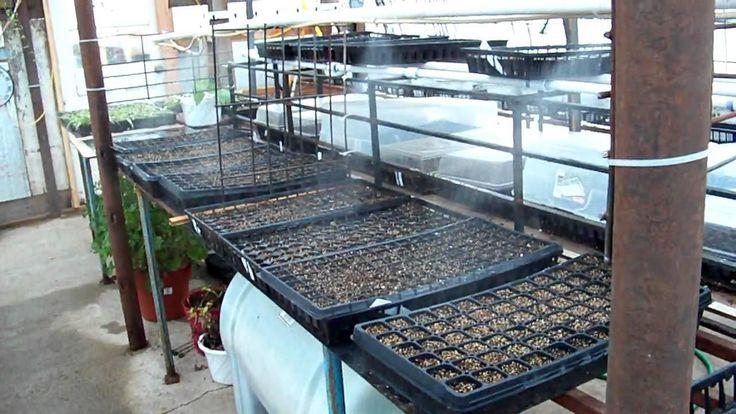 Diy misting system for greenhouse greenhousediy