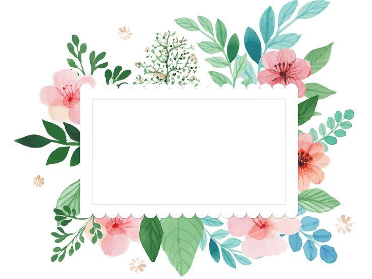 color flower - بحث Google